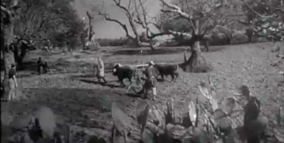 Archives ina.fr : Sur les routes de Kabylie en 1947